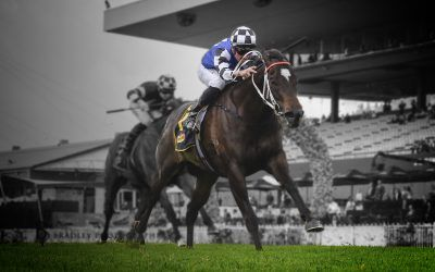 Wet track ideal for Enchanted Heart in Takeover Target Stakes!