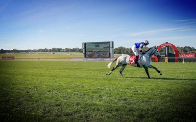 Maher and Eustace chase second Grand National Hurdle