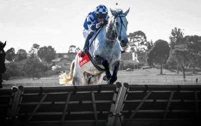 Saunter Boy bounces back in style in The Australian Hurdle!
