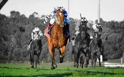 Redoute's Image – Jun 09, 2021 – Sunshine Coast