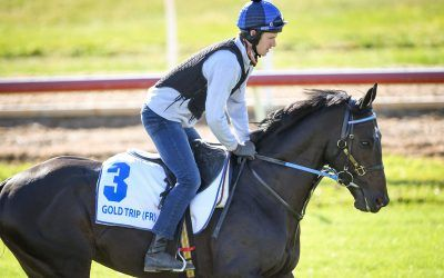 Cox Plate raiders settle in at Werribee