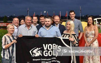 Widgee Turf – the next VOBIS superstar