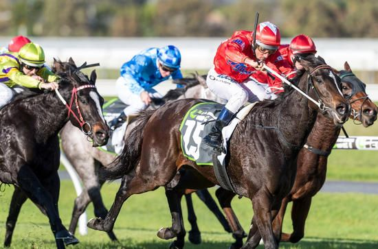 She's So High Adds Group Three Proud Miss Stakes To Her Resume