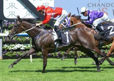 Price-Aiming-For-First-Golden-Slipper-Win