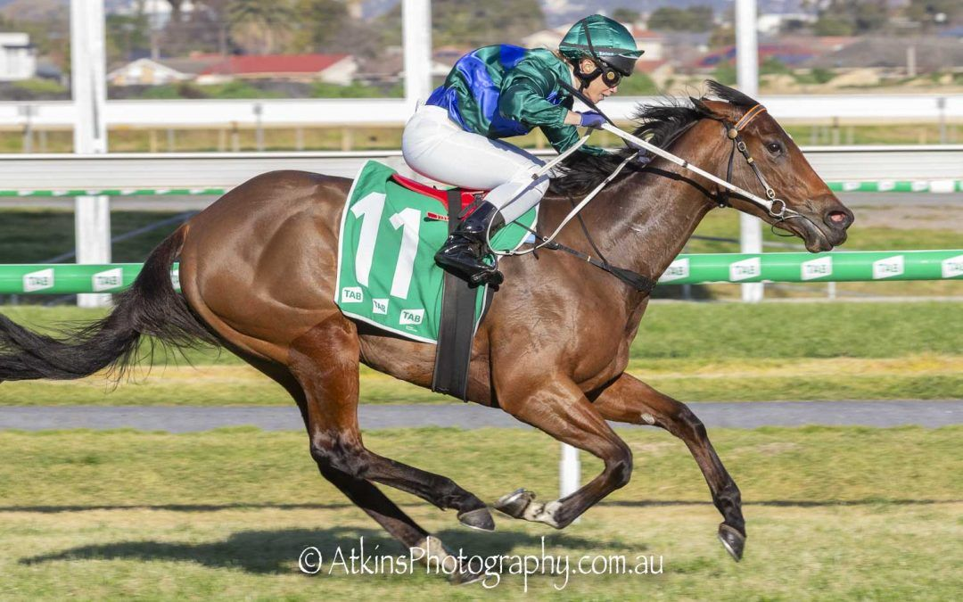 Parlophone shows class with commanding win for Mick Price in the Lightning Stakes at Morphettville