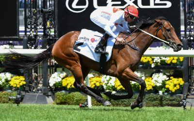 Teleplay scores again on Melbourne Cup Day