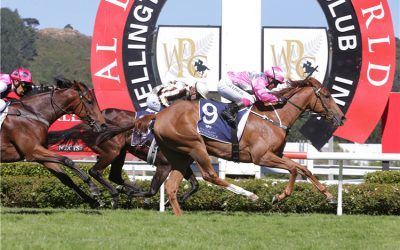 G2-winning NZ filly bound for Melbourne