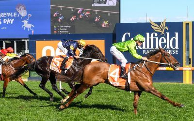 Our Playboy toys with rivals in Gr 3 Vain Stakes