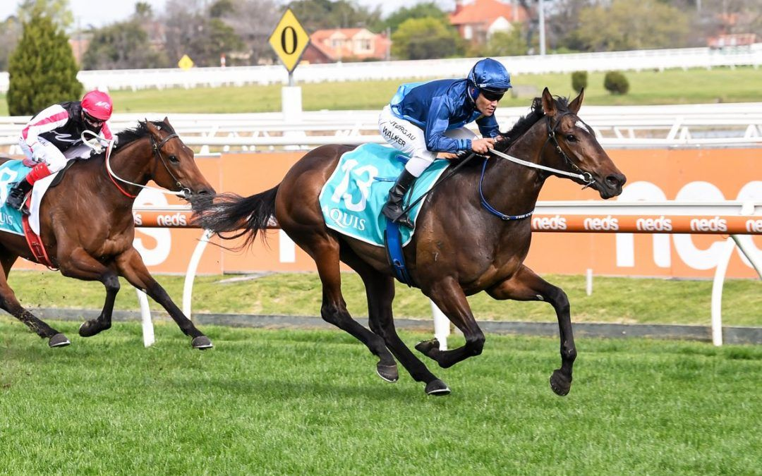 Odeum stakes Guineas claim