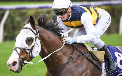Price confirms Golden Eagle target for I'm Thunderstruck after Valley win