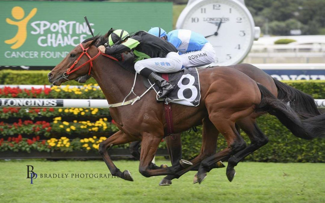 STOCK rises at Randwick!