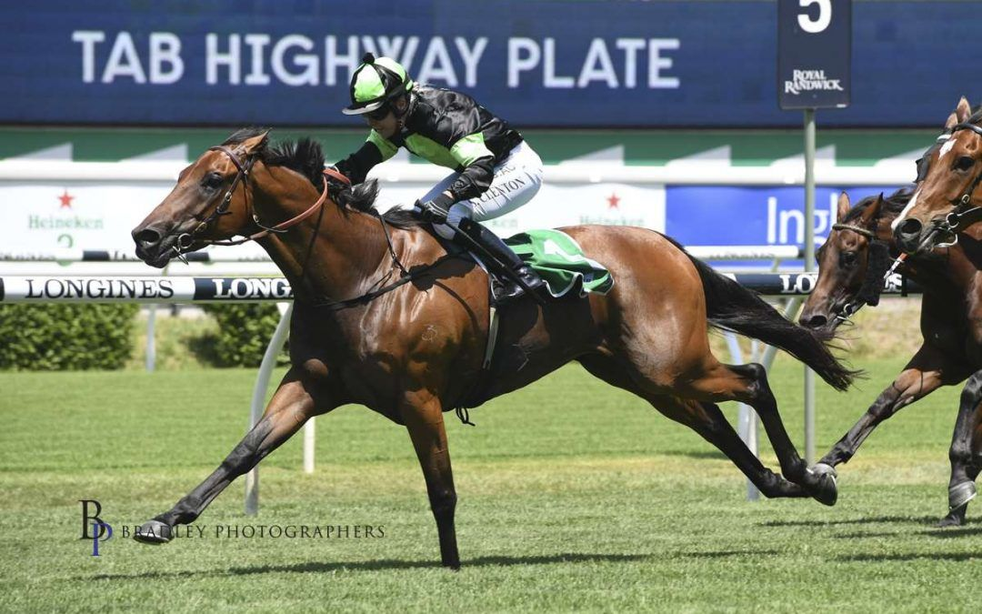 Dominant GREENSPAN confirms Country Championships path