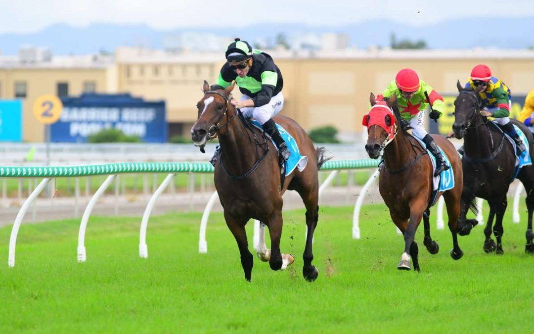 Proven & O'Dea double up on the Gold Coast