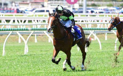 SPIRITED win for smart colt!