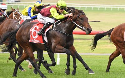 STREET ICON RETURNS TO WINNING FORM