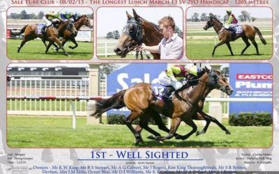 Well Sighted | Sale VIC