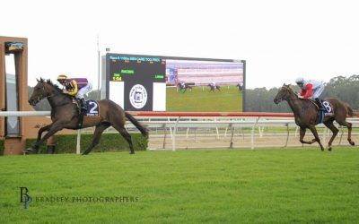 Commute wins at second start