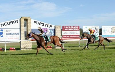 Onemore Sapphire too good at Tuncurry
