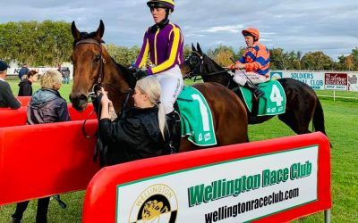 Enamour too strong at Wellington