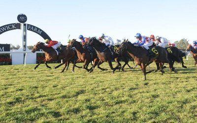 Martilago wins at Warwick Farm!