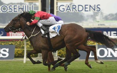 Daysee Doom wins on a Saturday at Rosehill