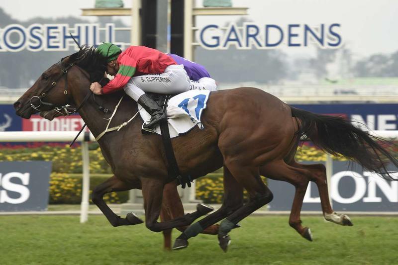 Daysee Doom wins on a Saturday at Rosehill