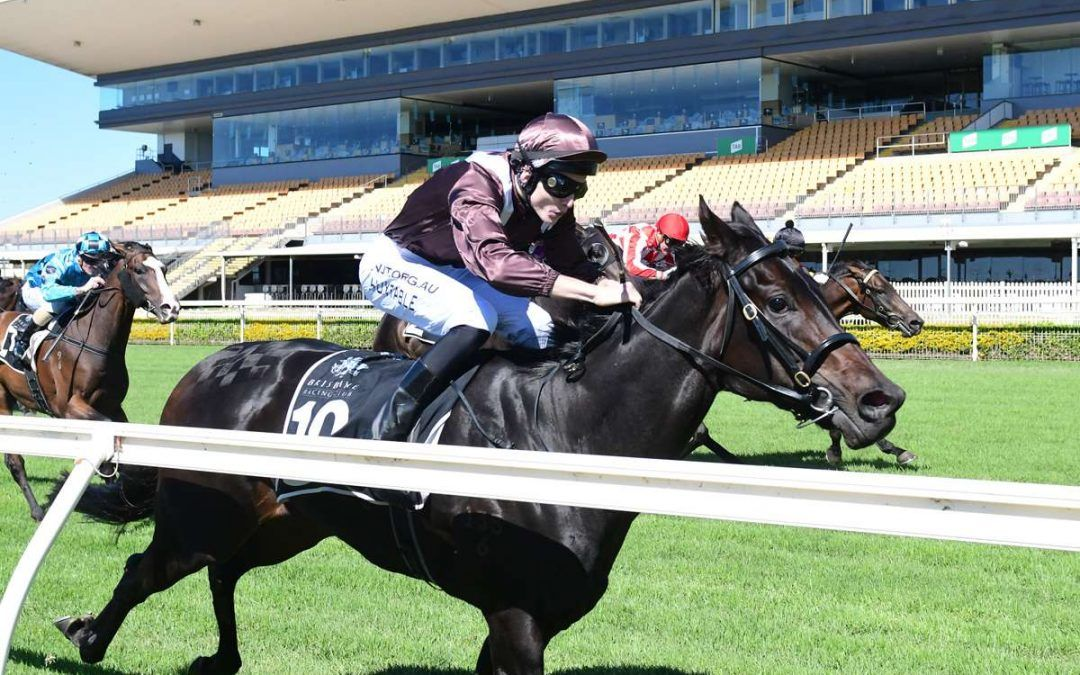 ICONISTA REWARDED FOR CONSISTENT FORM