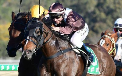 SUPERBOWL SUNDAY WINS ON DEBUT FOR STABLE
