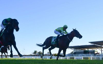 WOWSERS STORMS HOME AT IPSWICH