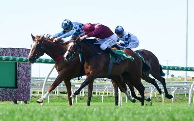 MAIDEN WIN FOR MUCH IMPROVED MISS TWENTY TWO
