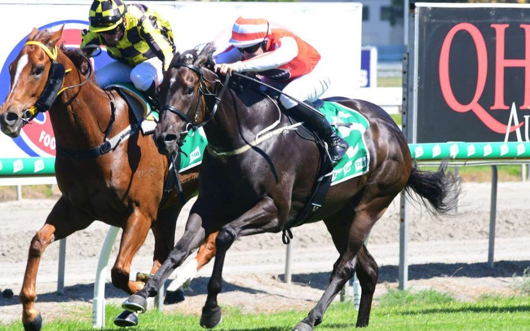 Threepoint Missile wins at the Gold Coast