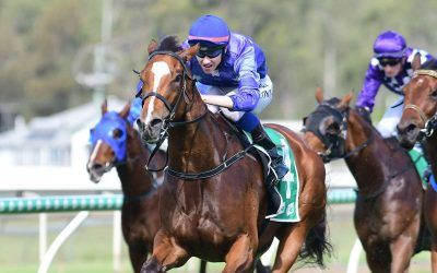 DASH FOR DREAMS GOES ALL THE WAY AT IPSWICH