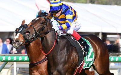 PALAISIPAN EXTENDS HER PICKET FENCE