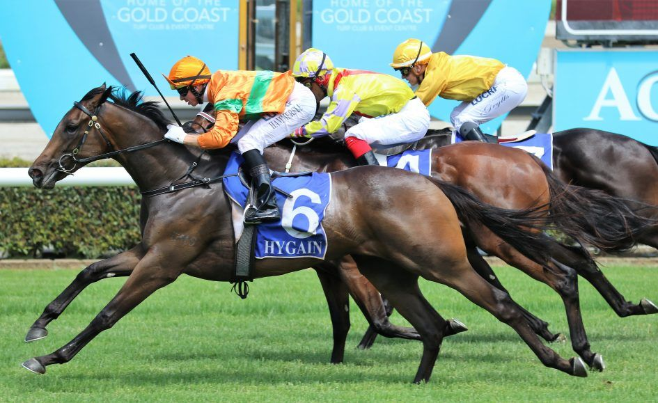 Belated Gold Coast Chance for Katy