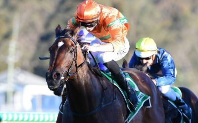 Two on the bounce for JEWEL OF THE CROWN