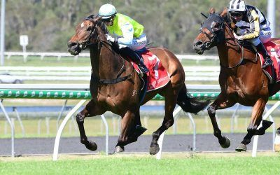 Hoysted's faith in TOTALLY CHARMED rewarded