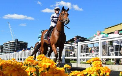Uncommon James claims Oxlade Stakes
