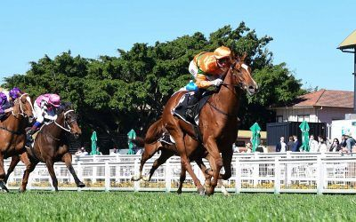 GOLD SHOOTING for Magic Millions