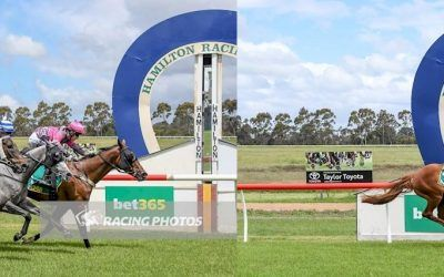 Wilde Racing's domination at Hamilton continues