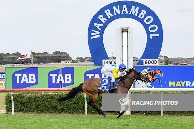 Havashout and Toff Love win on Koroit Cup Day