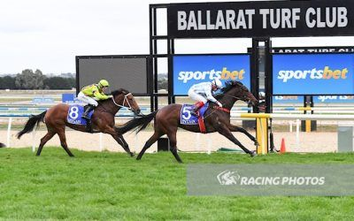 Dinga relishes the wet conditions at Ballarat