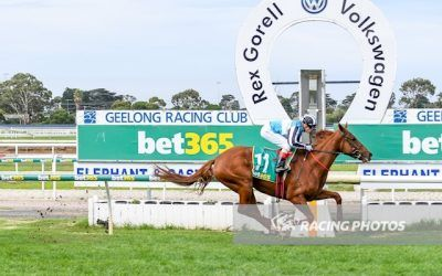 Two lovely stayers bring up a double at Geelong