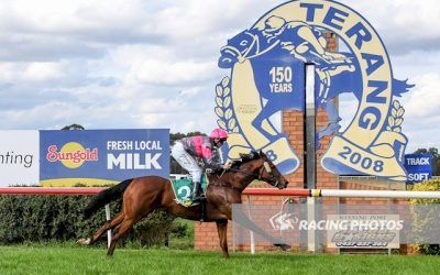 Now and Forever wins at Kyneton and NZ purchase Paddy Mac impresses at Terang