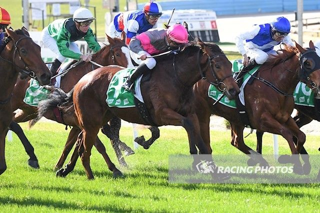 Glassey Miss wins narrowly at Cranbourne