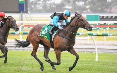 Realeza makes it two on the trot