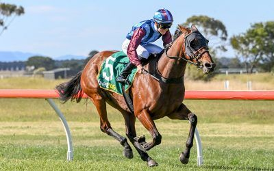 Boxing Day Double at Penshurst