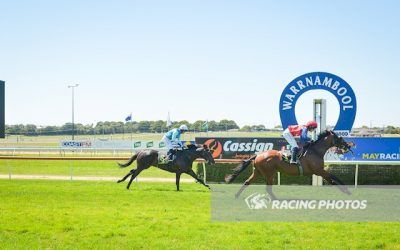 Field Of Lights a winner at the 'bool