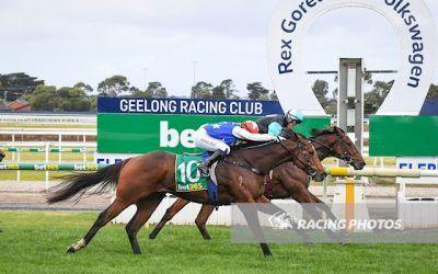 Realeza wins at Geelong