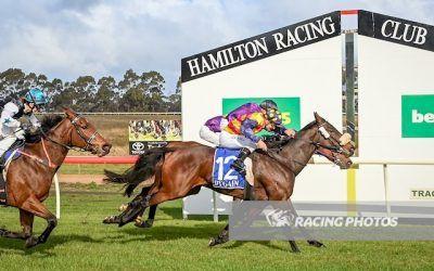 Tonnarella wins maiden at Hamilton