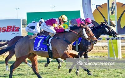 Queen Zyrah a winner over the Swan Hill carnival
